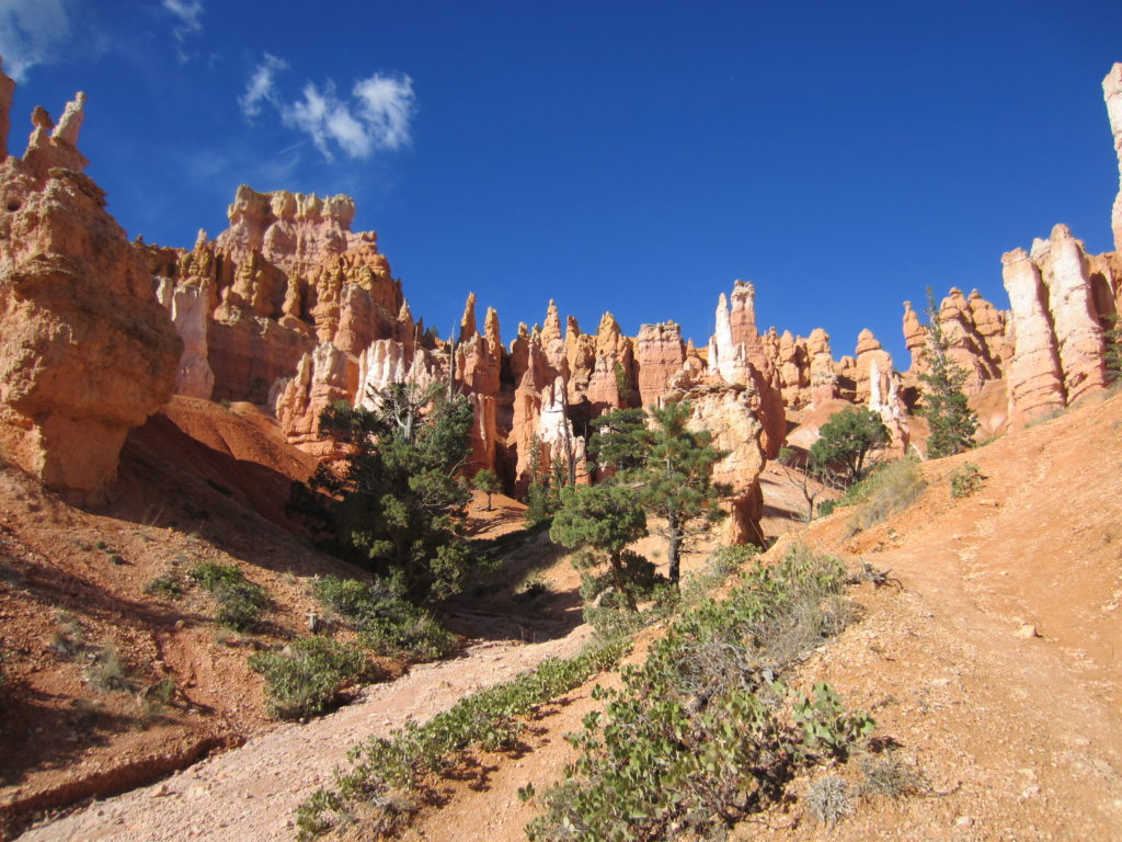bryce canyon queen trail