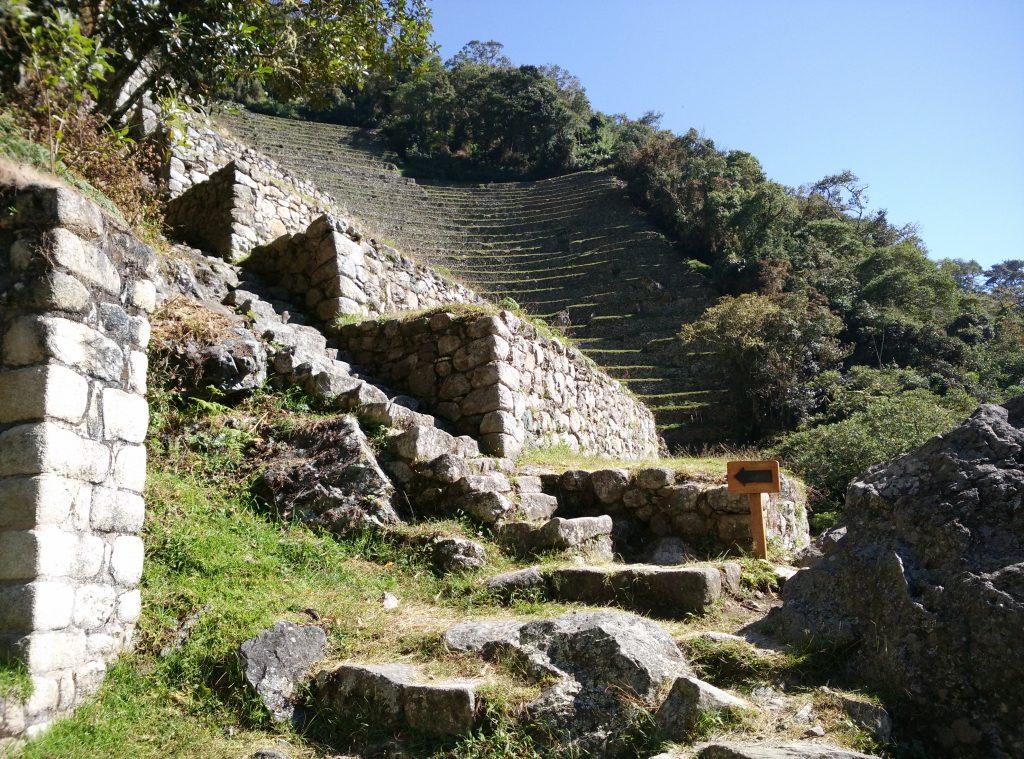 terrasse inca trail